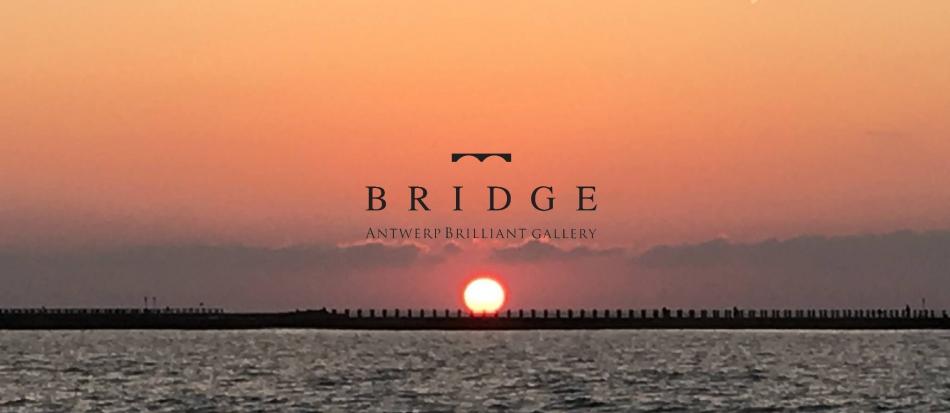 煌めく夕日は恋人たちを繋ぐ神秘の輝きbRIDGEでも人気の結婚指輪ダイヤモンドハーフエタニティ