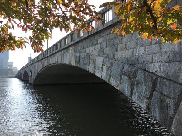 ひとつひとつの夢は違うサイズでもいつの間にかしっかり重なり合う。  しっかりマッチした石(意思)同士が創り出す石の橋は強固な絆。