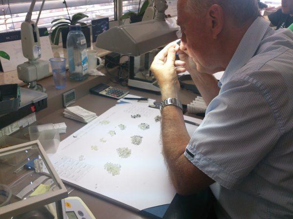 ブリッジ銀座アントワープブリリアントギャラリーではアソートされた高品質原石からダイヤモンドを研磨