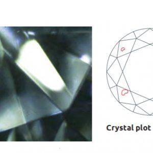 他の宝石が内包したダイヤモンドをエンゲージリングに