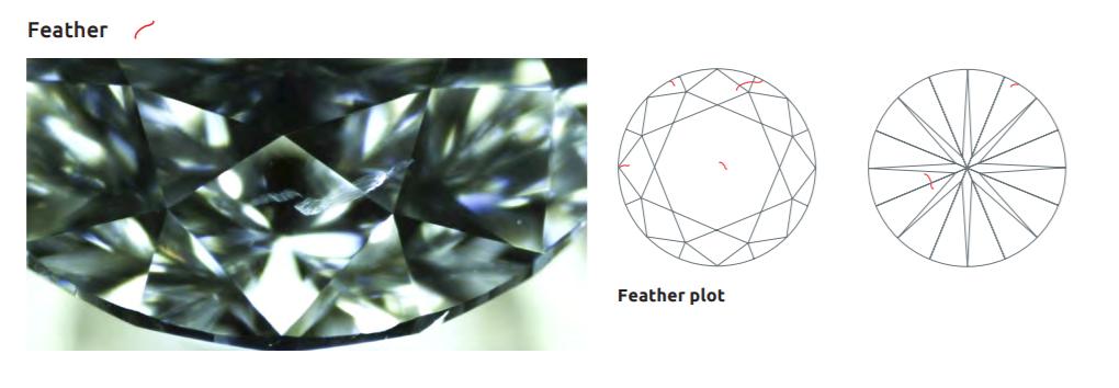 鳥の羽のような外観でフェザーと呼ばれるダイヤモンドの内包物