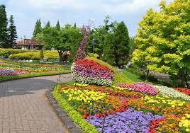 銀座のサプライズプロポーズ 安城産業文化公園デンパーク 愛知県