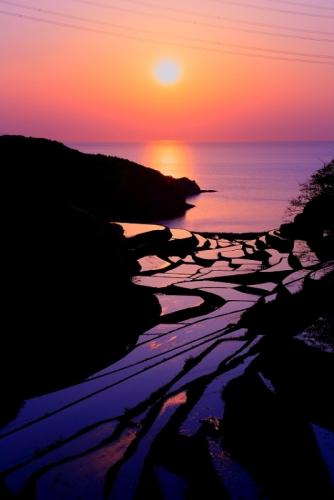 銀座のサプライズプロポーズ 浜野浦の棚田 佐賀県