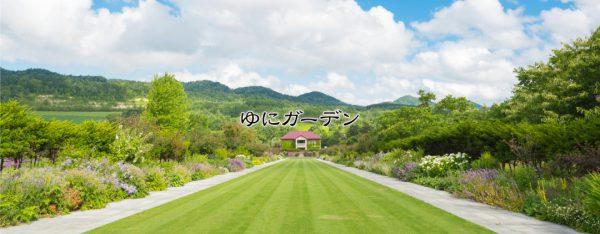 銀座のサプライズプロポーズ ゆにガーデン 北海道