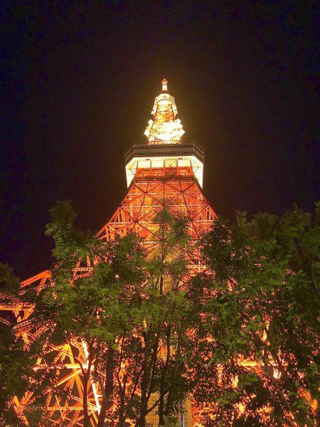 銀座のサプライズプロポーズ 東京タワー  東京 芝公園